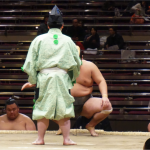 相撲に関わるお仕事  行司さん篇